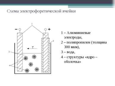 Схема электрофоретической ячейки 1 – Алюминиевые электроды, 2 – полипропилен ...