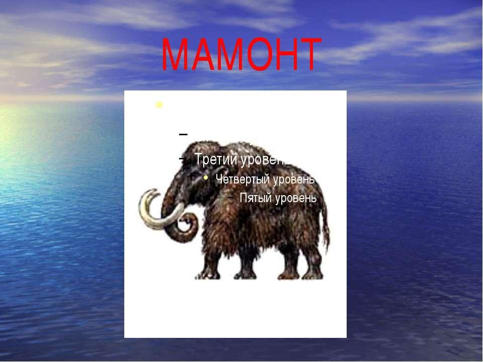 МАМОНТ