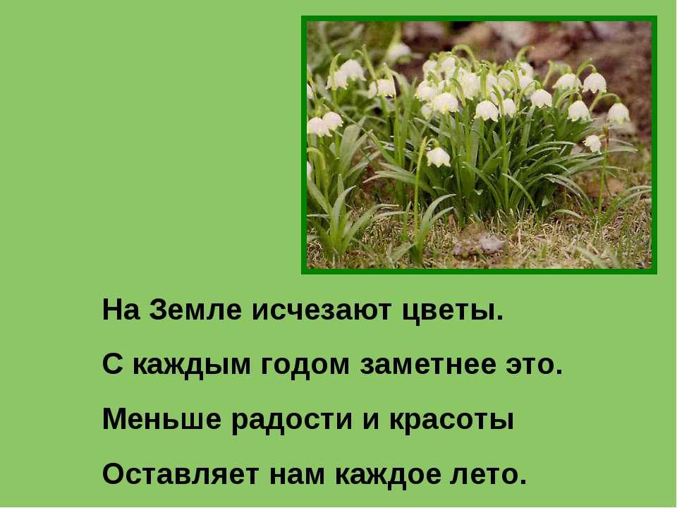 На Земле исчезают цветы. С каждым годом заметнее это. Меньше радости и красот...