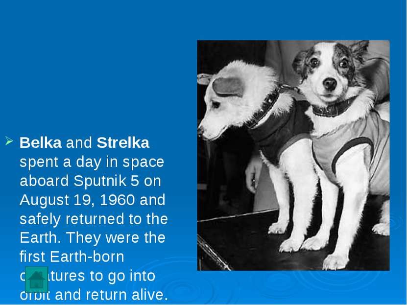 Belka and Strelka spent a day in space aboard Sputnik 5 on August 19, 1960 an...