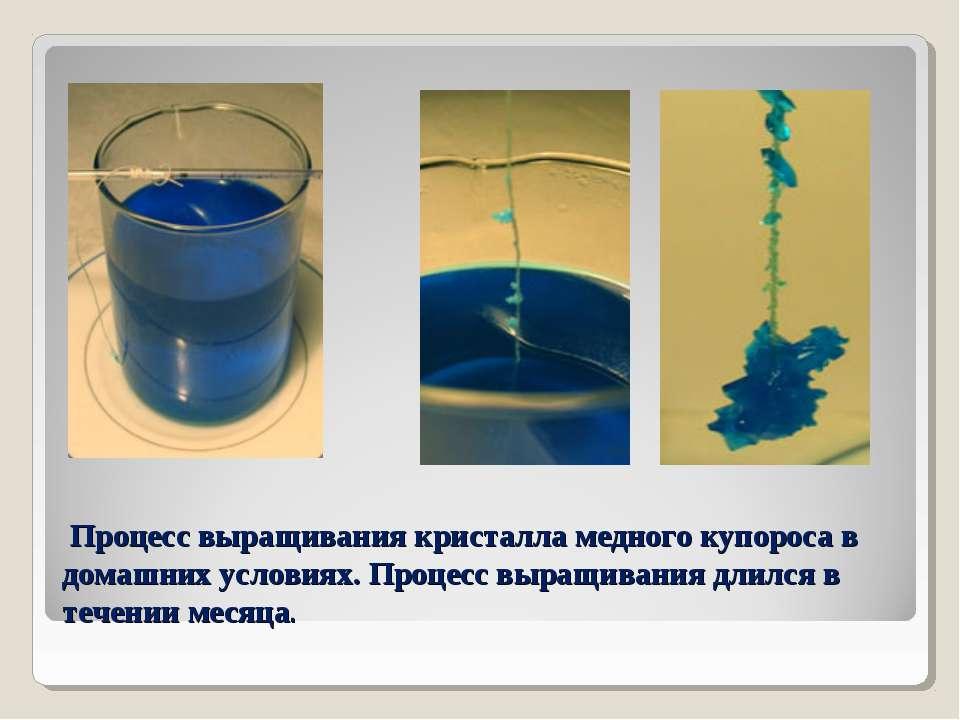 Процесс выращивания кристалла медного купороса в домашних условиях. Процесс в...