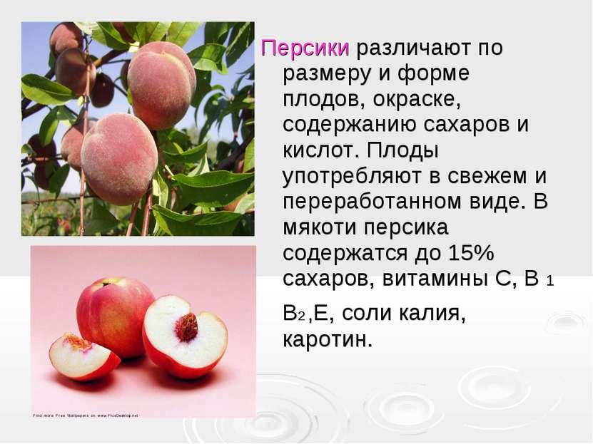 Персики различают по размеру и форме плодов, окраске, содержанию сахаров и ки...