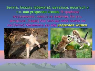 Бегать, бежать (вбежать), метаться, носиться и т.п. как угорелая кошка- В кра...