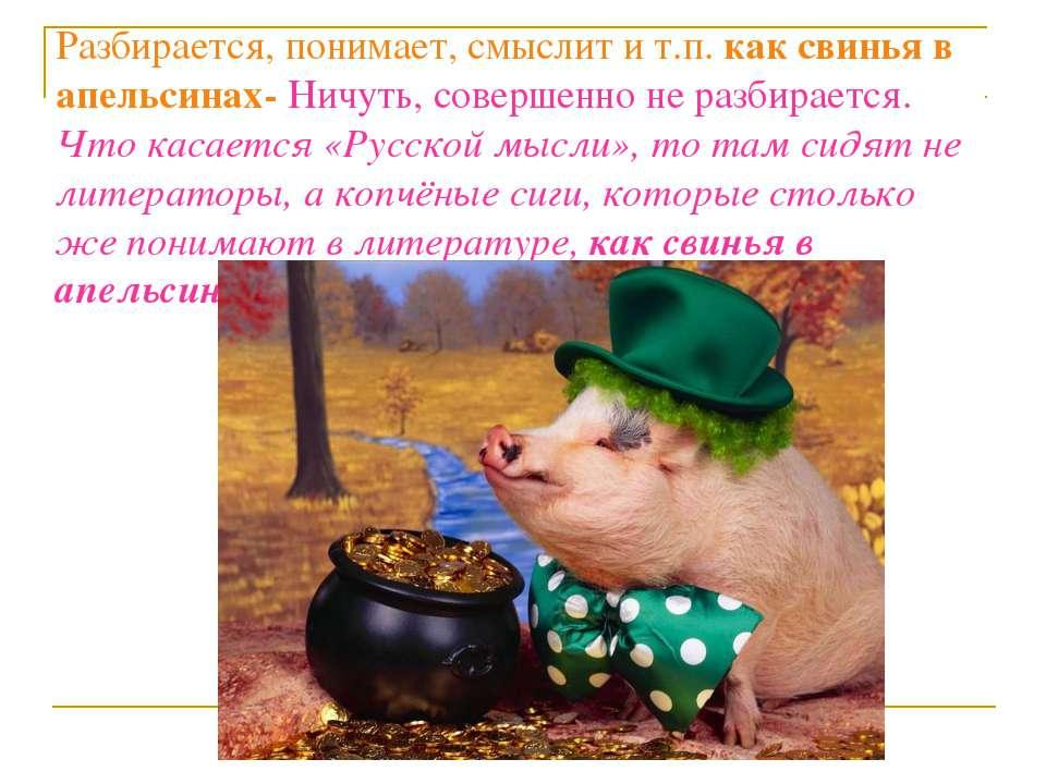 Разбирается, понимает, смыслит и т.п. как свинья в апельсинах- Ничуть, соверш...