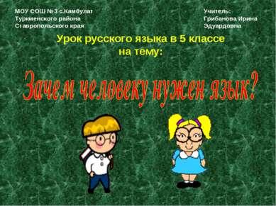 Урок русского языка в 5 классе на тему: МОУ СОШ №3 с.Камбулат Туркменского ра...