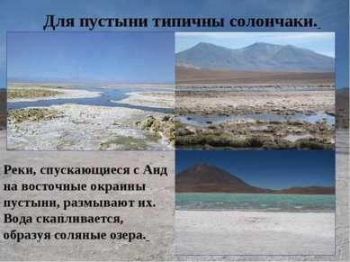 Для пустыни типичны солончаки. Реки, спускающиеся с Анд на восточные окраины ...