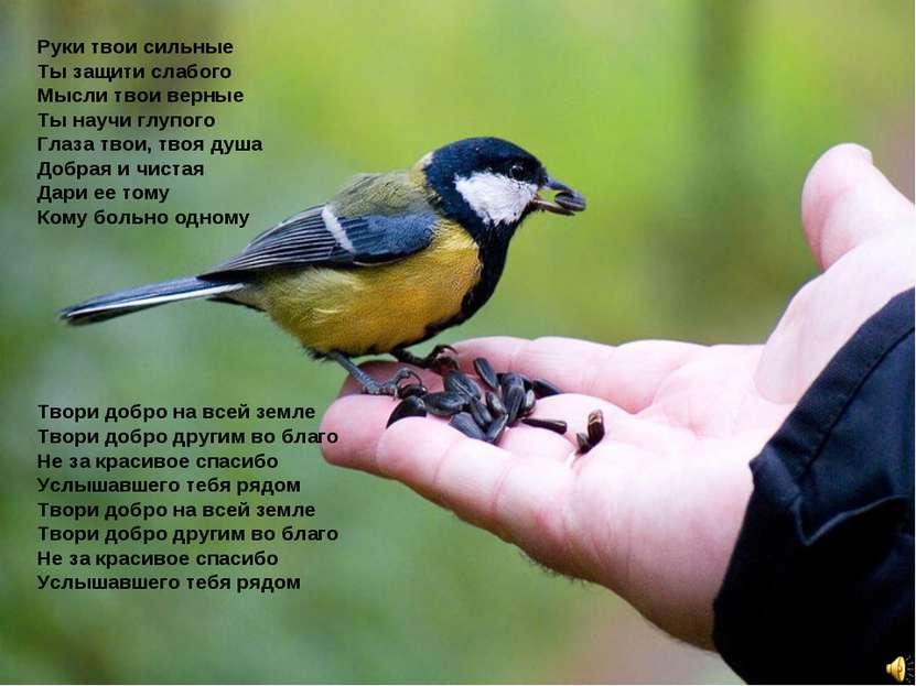 Руки твои сильные Ты защити слабого Мысли твои верные Ты научи глупого Глаза ...