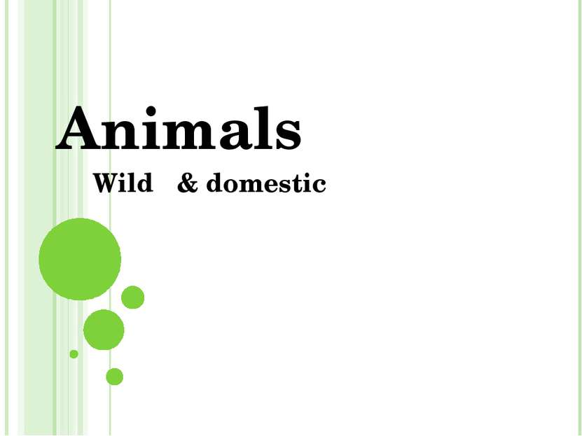 Animals Wild & domestic