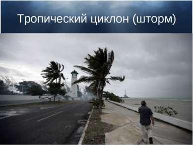 Тропический циклон (шторм)