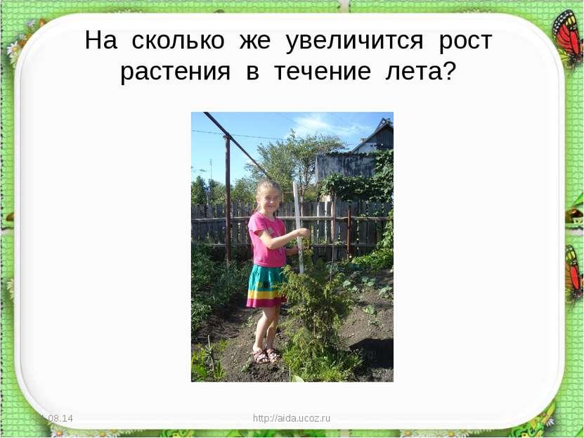 На сколько же увеличится рост растения в течение лета? * http://aida.ucoz.ru ...