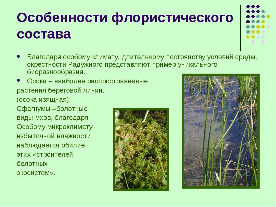 Особенности флористического состава Благодаря особому климату, длительному по...