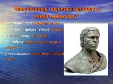 Чему новому научился человек в эпоху мезолита? 1. окончательно приручил огон...