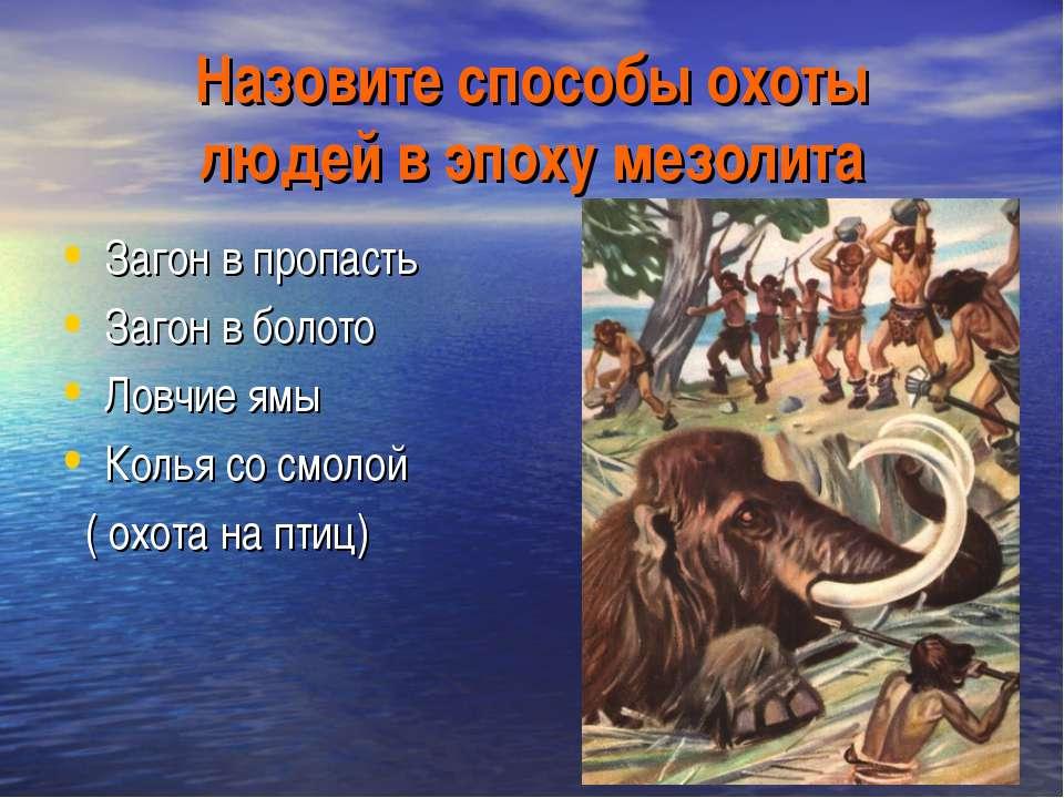 Назовите способы охоты людей в эпоху мезолита Загон в пропасть Загон в болото...
