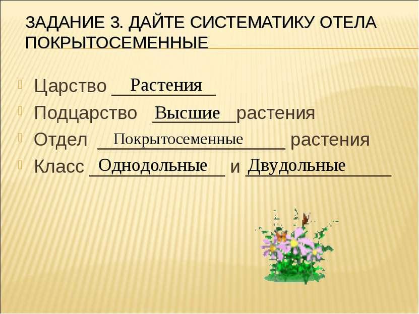 ЗАДАНИЕ 3. ДАЙТЕ СИСТЕМАТИКУ ОТЕЛА ПОКРЫТОСЕМЕННЫЕ Царство __________ Подцарс...