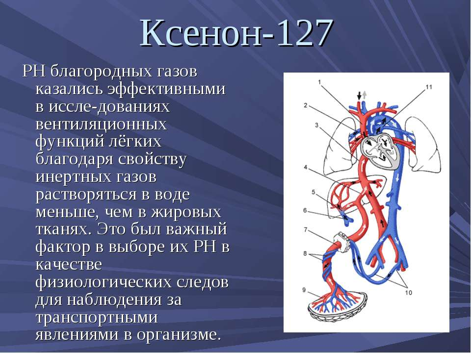 Ксенон-127 РН благородных газов казались эффективными в иссле дованиях вентил...
