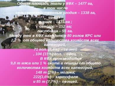 Общая площадь земли у КФХ – 1477 га, в том числе сельскохозяйственные угодия ...