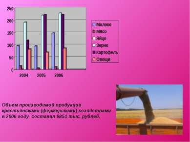 Объем производимой продукции крестьянскими (фермерскими) хозяйствами в 2006 г...