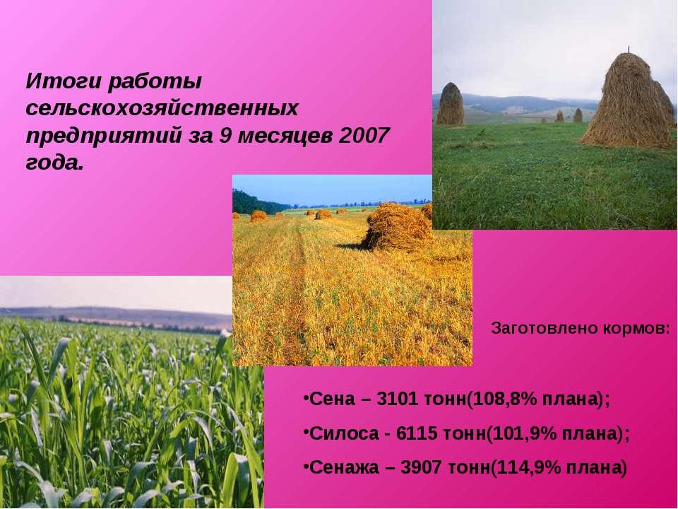 Итоги работы сельскохозяйственных предприятий за 9 месяцев 2007 года. Сена – ...