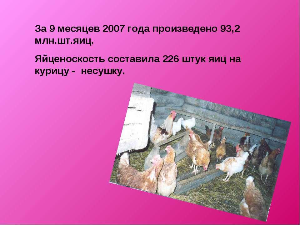 За 9 месяцев 2007 года произведено 93,2 млн.шт.яиц. Яйценоскость составила 22...
