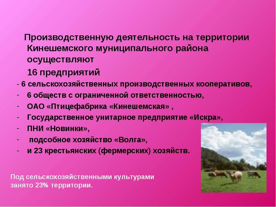 Производственную деятельность на территории Кинешемского муниципального район...