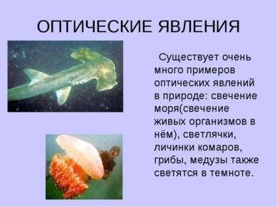ОПТИЧЕСКИЕ ЯВЛЕНИЯ Существует очень много примеров оптических явлений в приро...
