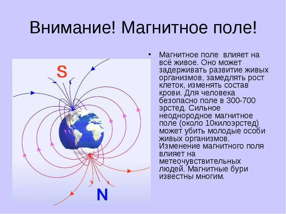 Внимание! Магнитное поле! Магнитное поле влияет на всё живое. Оно может задер...