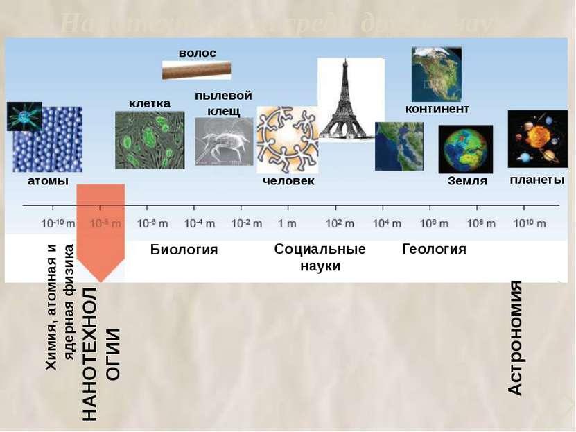 Нанотехнологии среди других наук