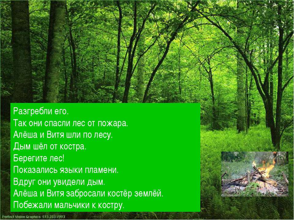 Разгребли его. Так они спасли лес от пожара. Алёша и Витя шли по лесу. Дым шё...