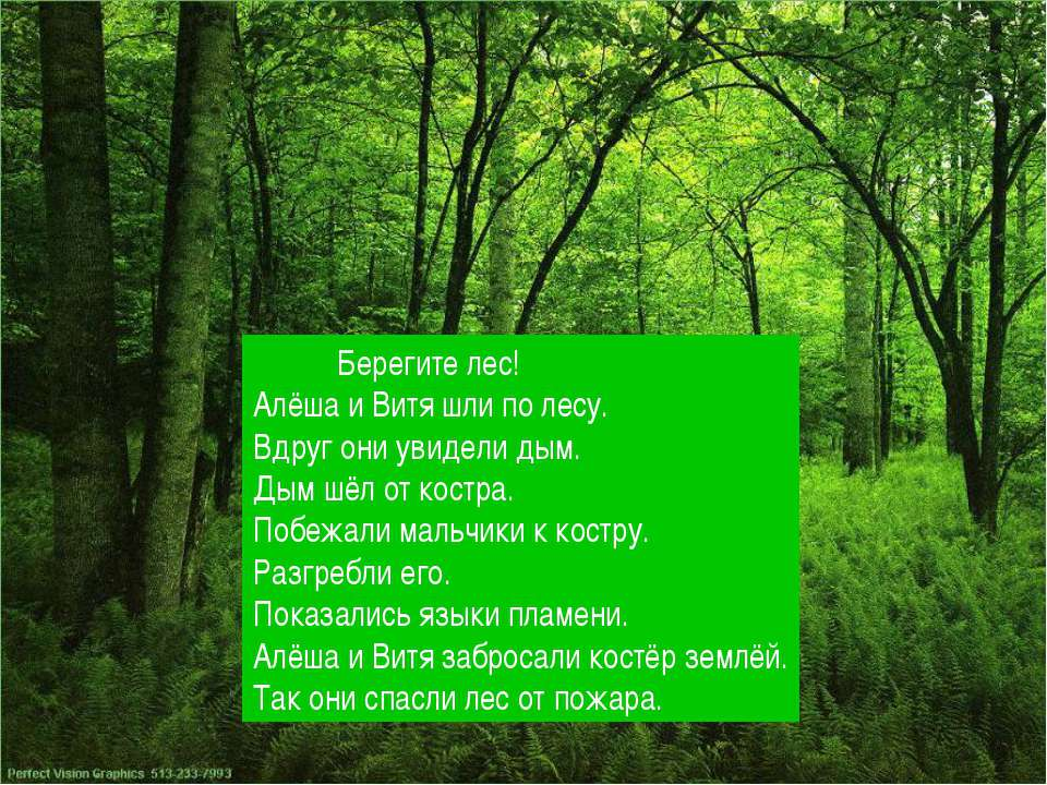 Берегите лес! Алёша и Витя шли по лесу. Вдруг они увидели дым. Дым шёл от кос...