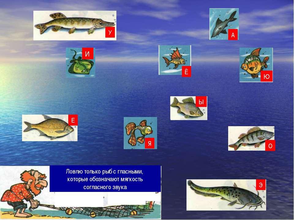 Ловлю только рыб с гласными, которые обозначают мягкость согласного звука О Я...