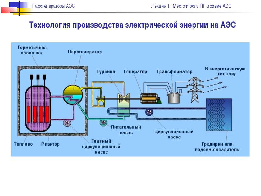 Технология производства электрической энергии на АЭС Парогенераторы АЭС Лекци...