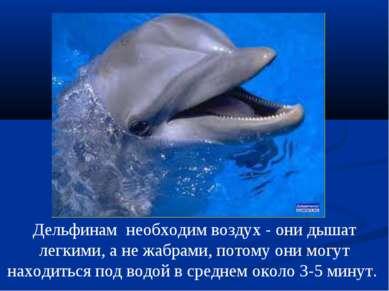 Дельфинам необходим воздух - они дышат легкими, а не жабрами, потому они могу...