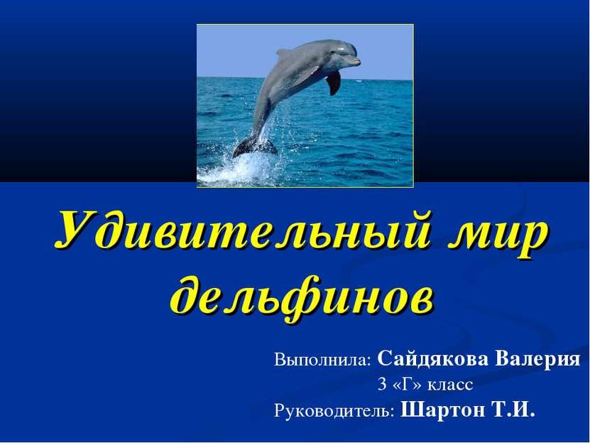 Удивительный мир дельфинов Выполнила: Сайдякова Валерия 3 «Г» класс Руководит...