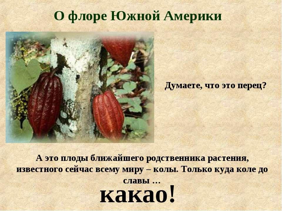О флоре Южной Америки Думаете, что это перец? А это плоды ближайшего родствен...