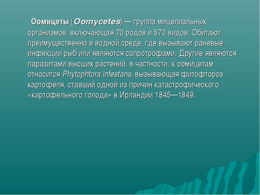 Оомицеты (Oomycetes)— группа мицелиальных организмов, включающая 70 родов и ...