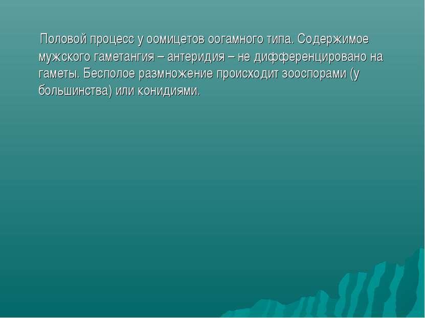 Половой процесс у оомицетов оогамного типа. Содержимое мужского гаметангия – ...