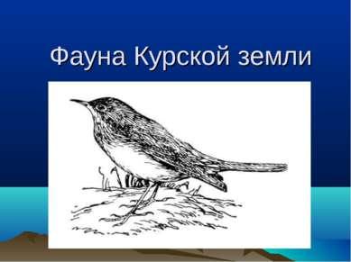 Фауна Курской земли