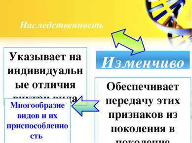 Наследственность Изменчивость Указывает на индивидуальные отличия внутри вида...