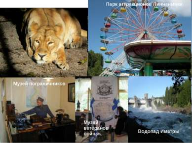 Зоопарк Коркеасаари в Хельсинки Парк аттракционов Линнанмяки Музей погранични...