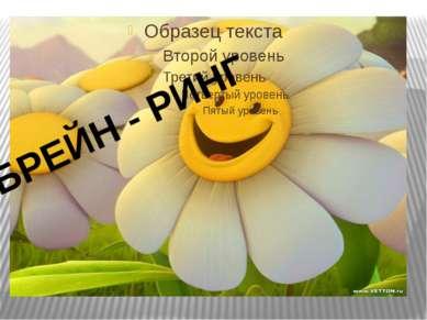 БРЕЙН - РИНГ