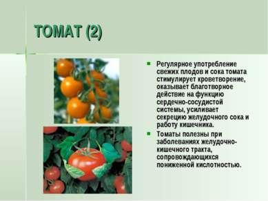 ТОМАТ (2) Регулярное употребление свежих плодов и сока томата стимулирует кро...