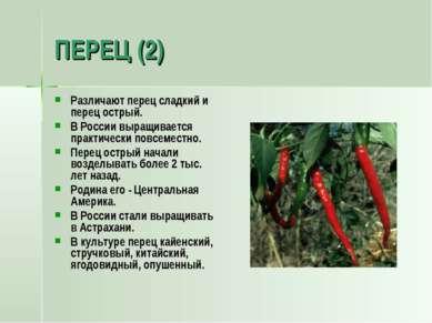 ПЕРЕЦ (2) Различают перец сладкий и перец острый. В России выращивается практ...