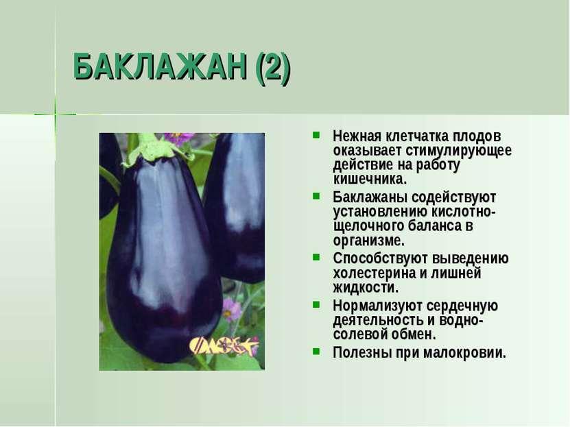 БАКЛАЖАН (2) Нежная клетчатка плодов оказывает стимулирующее действие на рабо...