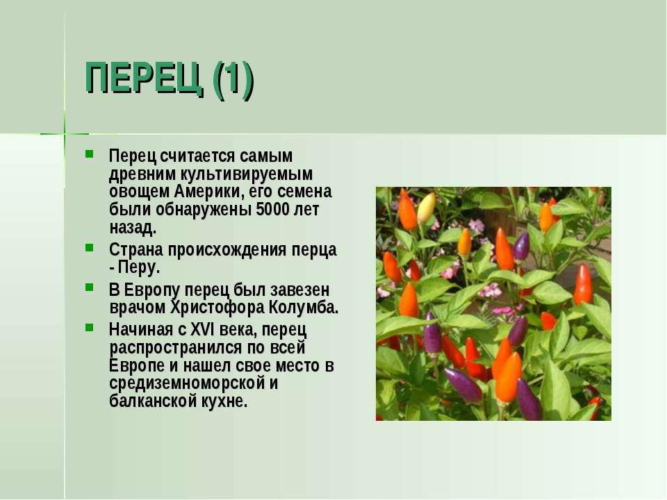 ПЕРЕЦ (1) Перец считается самым древним культивируемым овощем Америки, его се...