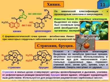 """Хинин. 11 А.М. Чибиряев """"Биологически активные соединения живых организмов"""", ..."""