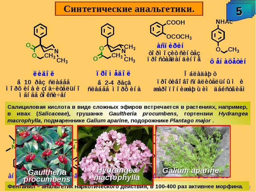 """Синтетические анальгетики. 5 А.М. Чибиряев """"Биологически активные соединения ..."""