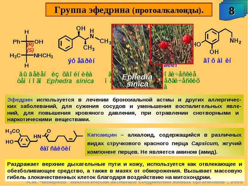 """Группа эфедрина (протоалкалоиды). 8 А.М. Чибиряев """"Биологически активные соед..."""