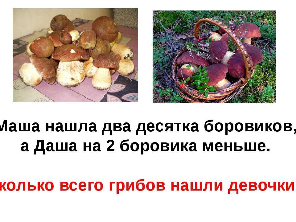 Маша нашла два десятка боровиков, а Даша на 2 боровика меньше. Сколько всего ...