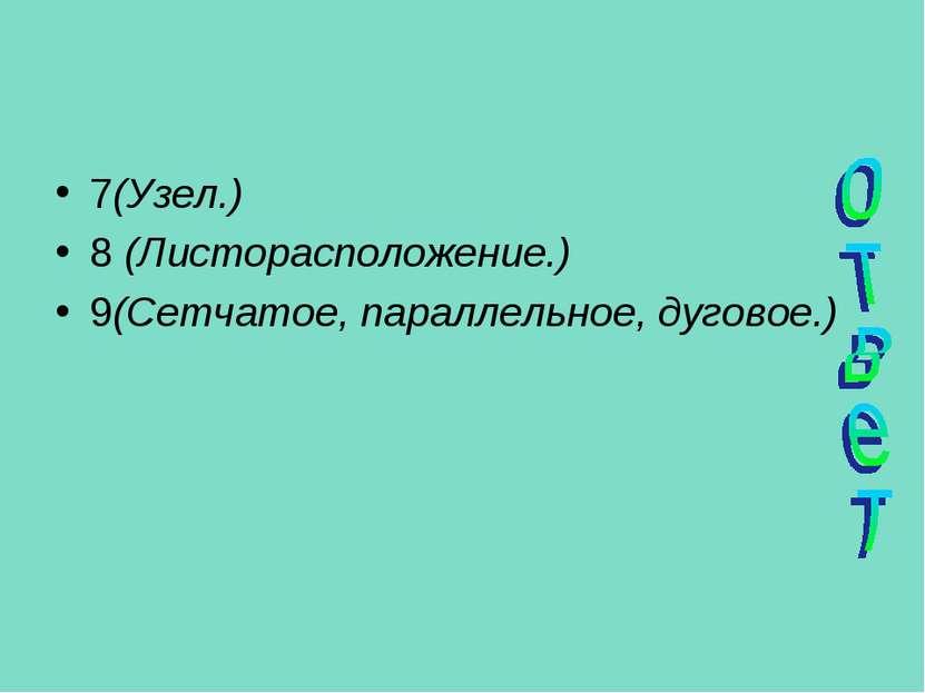 7(Узел.) 8 (Листорасположение.) 9(Сетчатое, параллельное, дуговое.)
