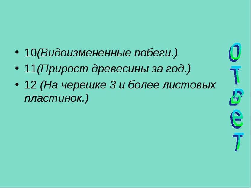 10(Видоизмененные побеги.) 11(Прирост древесины за год.) 12 (На черешке 3 и б...